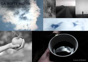LaBoiteNoire_F-Doutriaux_LuciedErree_2014